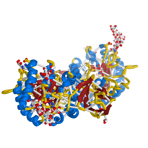 Carbohydrate-binding Protein